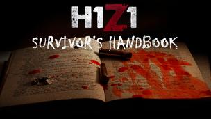 Survivor's 20handbook