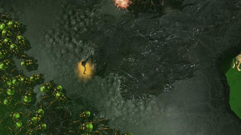 Swarm screenshot scout