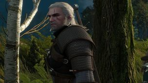 Witcher 3 generic hero