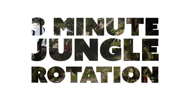 Junglerotation