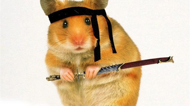 Ninjahamster 0